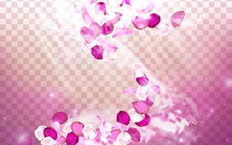 Pink flower aroma. Elements with petals dancing, 3d illustration Royalty Free Stock Photo