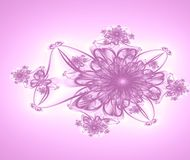 Pink Flower Background. Simple fractal background.Generated with fractal Royalty Free Stock Image