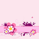 Pink flower  background. Royalty Free Stock Image