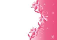 Pink flower background. Beautiful pink flower background stock illustration