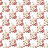 Pink, Flower, Blossom, Petal stock images