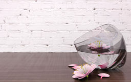 Pink flower blossoms in glass vase with clear water. 3D rendering Royalty Free Stock Photography