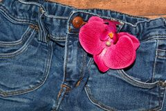 Pink Flower on Blue Jeans Royalty Free Stock Photo