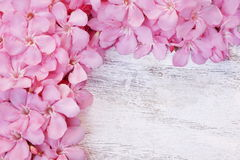 Pink flower border on white wooden background. With copy space for text stock images