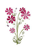 Pink flower bouquet. Calligraphy drawing of pink flower bouquet royalty free illustration