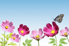 Pink flower with butterfly Royalty Free Stock Photo