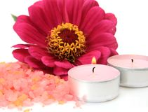 Pink flower and candles Royalty Free Stock Image