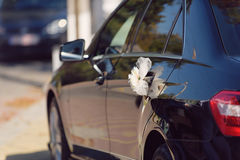 Pink Flower on Car Handle Royalty Free Stock Images