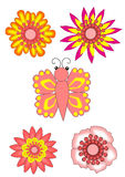 Pink flower collections Royalty Free Stock Photos