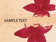 Pink Flower CopySpace Stock Photo