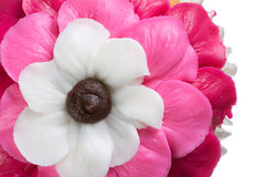 Pink Flower Cupcake. Delicious Pink, Red, and White Cupcake Isolated Stock Images