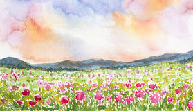 Pink flower field landscape watercolor painted. Pink flower field landscape watercolor on paper Stock Photos