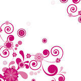 Pink Flower. Floral Background.