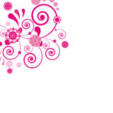 Pink flower. Floral background. royalty free stock photos