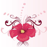Pink flower. Floral background Stock Images