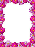 Pink flower frame stock photography