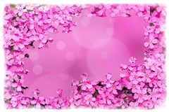 Pink flower frame with puzzle of flowers Stock Photos