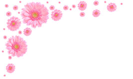 Pink flower frame on white background stock images