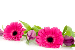 Pink flower garland Stock Photos