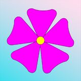 Pink flower on gradient background. Blue and white Stock Image