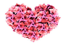Pink flower heart Royalty Free Stock Images