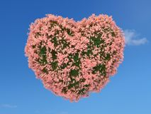 Pink flower heart on the sky. Heart shape covered with grass and pink flowers on blue sky Stock Photography