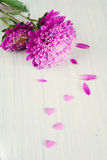 Pink flower and hearts Royalty Free Stock Images