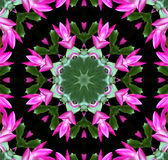 Pink Flower Kaleidoscope Royalty Free Stock Photo