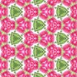 Pink flower kaleidoscope royalty free stock photo