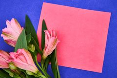 a pink flower lays on pink paper in purple background. Flat lay style. Space for text stock photo