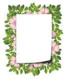 Pink flower and leaf frame. Illustration stock illustration