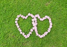 Pink flower love heart Stock Photography