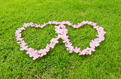 Pink flower love heart. Frame isolated on Green grass background Royalty Free Stock Photos