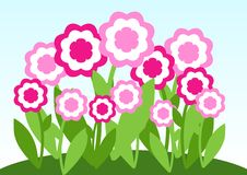 Pink flower meadow Stock Photography