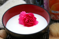 Pink Flower in Milk Royalty Free Stock Images
