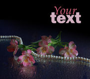 Pink flower and pearl necklace Stock Photos