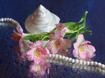 Pink flower and pearl necklace Royalty Free Stock Photos