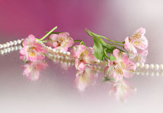 Pink flower and pearl necklace Stock Image