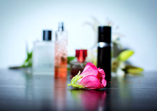 Pink flower on perfumes background Royalty Free Stock Images
