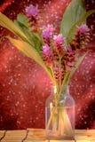Pink flower of Pink Siam Tulip or Curcuma sessilis flower in vas Royalty Free Stock Image