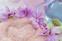 Pink flower rounding pink bath salt with etheric oil in a bottle. On pink background. Aroma therapy Stock Photos