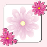 Pink Flower shop Stock Images