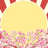Pink flower and sun texture background Royalty Free Stock Image