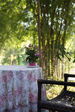 Pink flower, table and chair on terrace Royalty Free Stock Photos