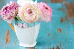 Pink Flower in teacup. Blooming pink flowers in teacup Royalty Free Stock Photos