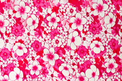 Pink flower texture Royalty Free Stock Photo