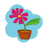 Pink flower vector. Vector illustration of beautiful pink flower Stock Photos