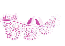Pink flowering branch Royalty Free Stock Image