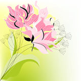 Pink flowers. Universal template for greeting card, web page, background Royalty Free Stock Photography