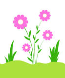 Pink flowers stock illustration